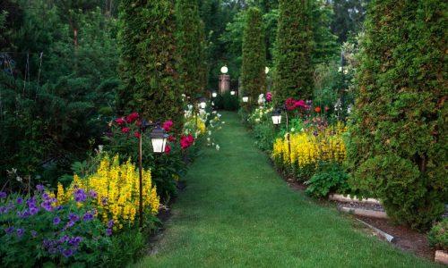 5 consigli per un giardino perfetto